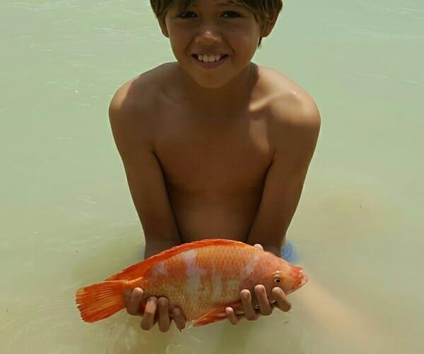 orange-bla-nin