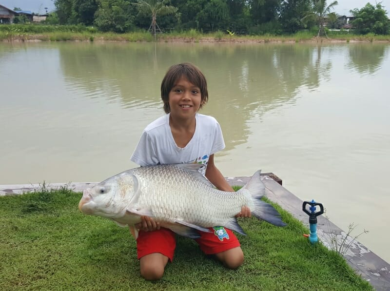 carp-fishing-thailand