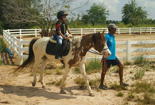 kids-pony-rides-udon-thani
