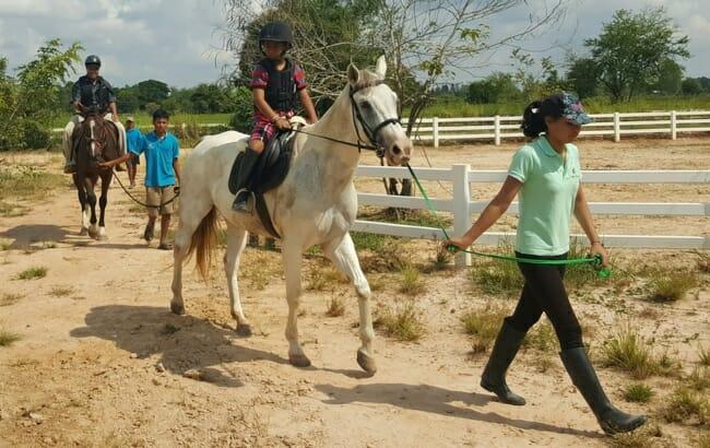 pony-rides-udon-thani