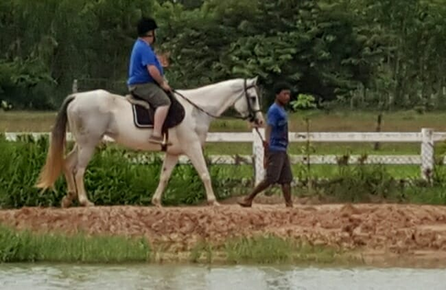 thailand-pony-trecking