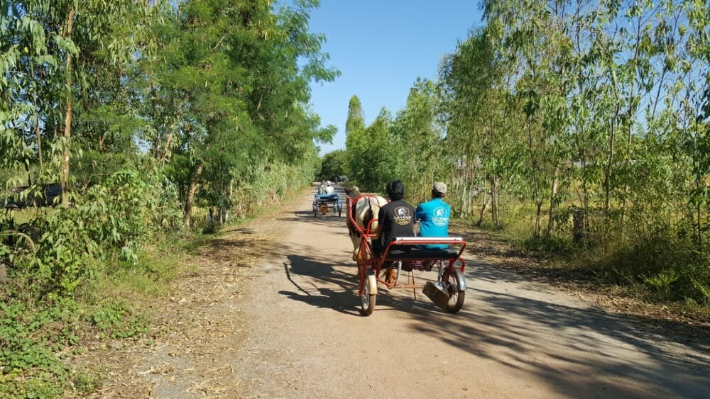 horse-and-carriage-cart-sulky-ride-udon-thani-thailand