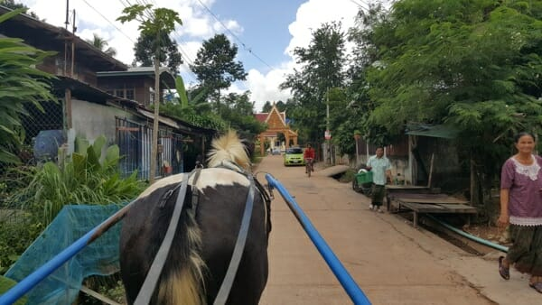 horse-and-cart-thailand